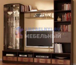 stenki-pod-televizor2