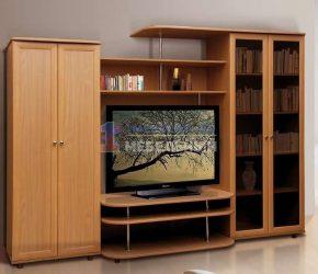 stenki-pod-televizor22