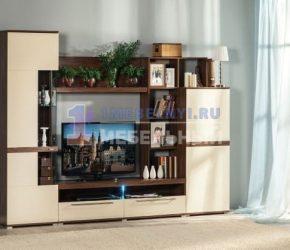 stenki-pod-televizor24