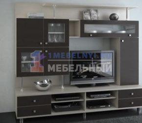stenki-pod-televizor30