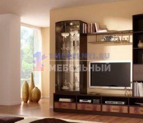stenki-pod-televizor48