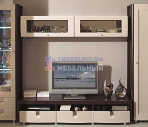 stenki-pod-televizor5