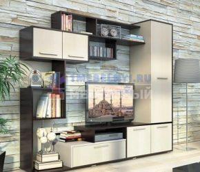 stenki-pod-televizor50