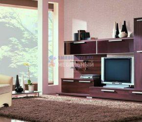 stenki-pod-televizor6