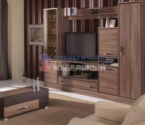 stenki-pod-televizor8
